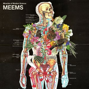 Image for 'MEEMS'