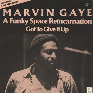 Image for 'A Funky Space Reincarnation (Instrumental)'