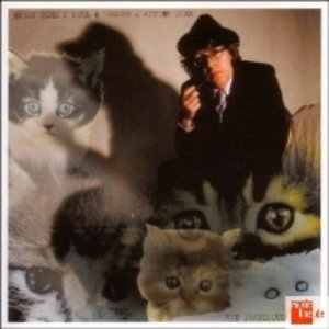 Image for 'Every Time I Sell A Record A Kitten Dies'