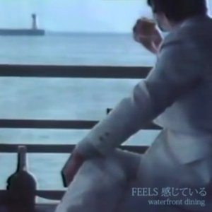 Image for 'FEELS 感じている'