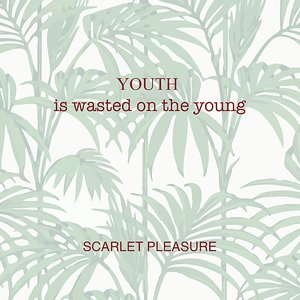 Image for 'Youth Is Wasted On The Young'