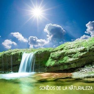 Image for 'Sonidos de la Naturaleza Relajacion'