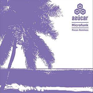 Image for 'Pecan (DJ Madskillz & Gregor Salto Remix)'
