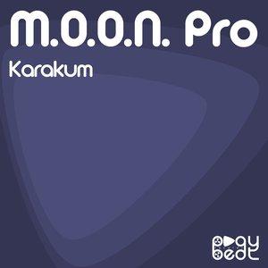 Image for 'Karakum'