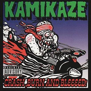 Image for 'Crash, Burn, and Bleeeed!!!!'