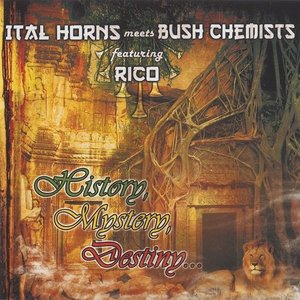 Image for 'Ital Horns meets Bush Chemists featuring Rico'