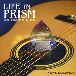 Image pour 'Life in Prism: Guitar Notes From the Inside'
