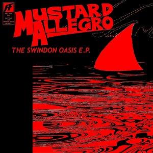 Image pour 'The Swindon Oasis EP'