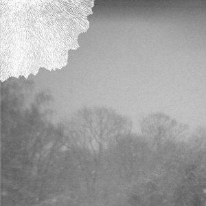 Image for 'forward / deluge'