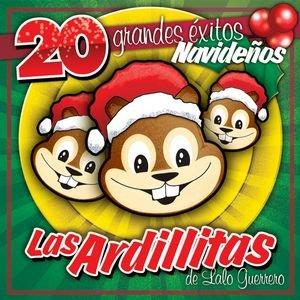 Image for '20 Grandes Exitos De Navidad'