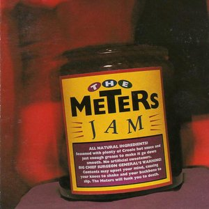 Image for 'The Meters Jam'
