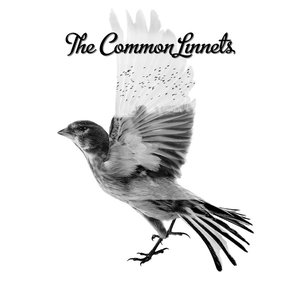 Image for 'The Common Linnets'