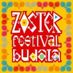 Image for 'Festival budala'