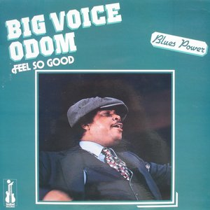 Image for 'Feel So Good (feat. Magic Slim, Lucky Peterson) [Blues Power]'
