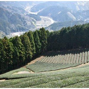 Image for '黒川 kurogawa River'