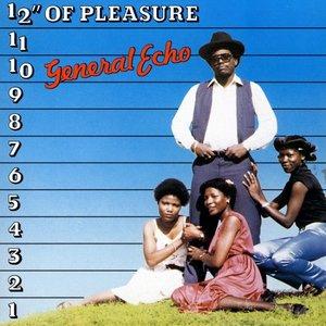 "Image for '12"" of Pleasure'"