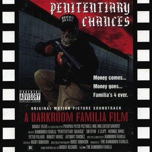 Bild für 'Penitentiary Chances'