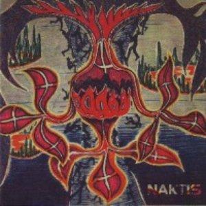 Image for 'Naktis'
