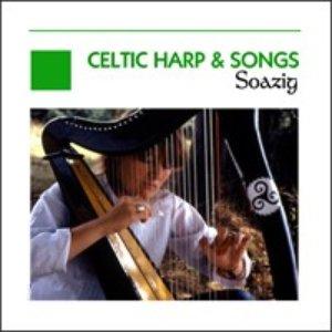 Immagine per 'Celtic Harp & Songs - Ireland - Scotland - Brittany'