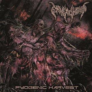 Bild für 'Pyogenic Harvest'