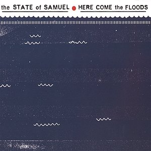 Image for 'Here Come The Floods'