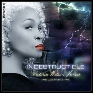 Image for 'Indestructible: CD 1 Chillin''