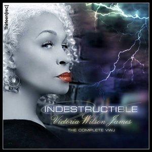 Bild für 'Indestructible: CD 1 Chillin''