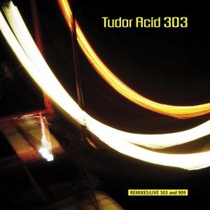 Image for 'Tudor Acid 303'