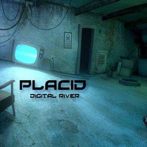Image for 'Digital River'