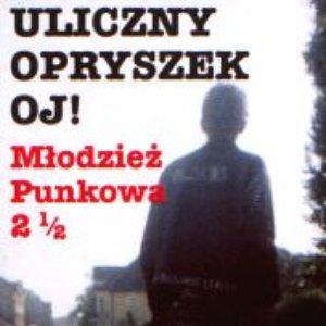 Image for 'Młodzież Punkowa 2 1/2'
