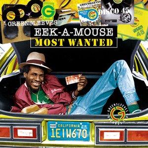 Imagen de 'Eek-A-Mouse Most Wanted'