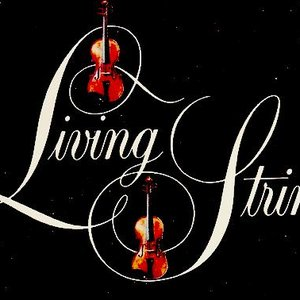 Image pour 'Living Strings'