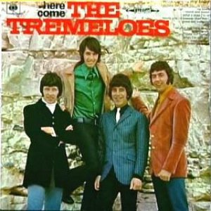 Image for 'Here Come the Tremeloes'