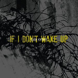 Image for 'if i don't wake up'