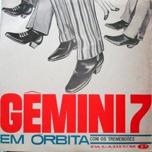 Image pour 'Gemini 7'