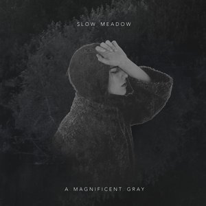 Image for 'A Magnificent Gray'