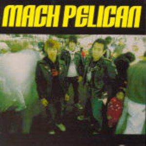 Immagine per 'Mach Pelican'