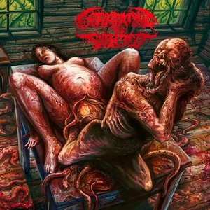 Image for 'Reborn In Putrefaction'