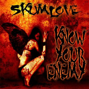 Image for 'Know Your Enemy - Single'