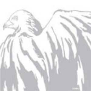 Imagem de 'White Birds EP'
