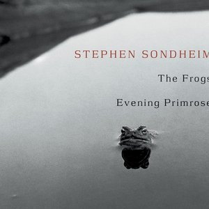 Imagen de 'The Frogs / Evening Primrose'