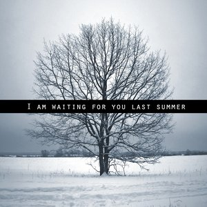 Immagine per 'I am waiting for you last summer'