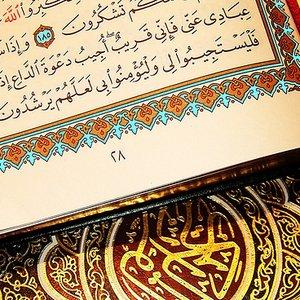 Image for 'Sa'ad Al-Gamidi Musshaf'
