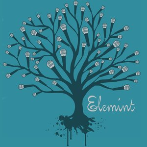 Image for 'Elemint'