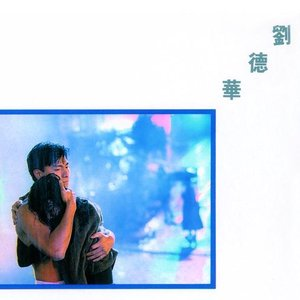 Image for '红尘天使'