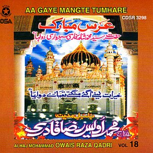 Image for 'Aa Gaye Mangte Tumhare Vol 18'