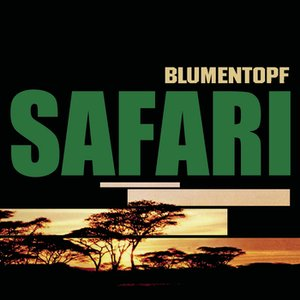 Image for 'Safari (Instrumental)'