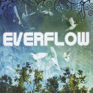 Image for 'Everflow'