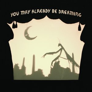 Image for 'You May Already Be Dreaming'