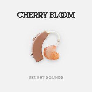 Image for 'Secret Sounds'